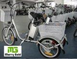 قديم راكب شحن ثلاثة عجلة [250و] درّاجة ثلاثية كهربائيّة