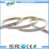 Lumière de bande de Striscia SMD2835 300LED 12V