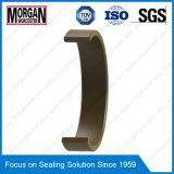 FRI hydrauliques de la série l'anneau d'usure/joint torique du guide de tige de vérin