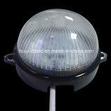 좋은 가격 고품질 LED 점 빛 및 LED 화소 빛 IP65 옥외 빛