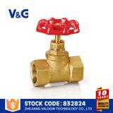 Válvula de paragem de ferro flexível com flange (VG-C10102)