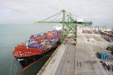 Consolidare lo sdoganamento dell'aereo da trasporto del trasporto di mare del mediatore della dogana
