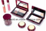 OEM de Plastic Vorm en de Producten van het Geval van de Doos van de Make-up van de Injectie Kosmetische