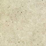 mattonelle di pavimento rustiche piene del materiale da costruzione del corpo di 600X600mm con l'iso