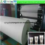One Side EP Coated Paper for Cup