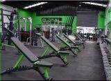 ハイエンド適性装置の調節可能なベンチ、ボディービルをやる練習の体操機械