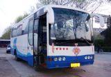 Bus utilizzato (YaXing YBL6920H)
