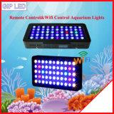 中国のRemote&WiFi制御120W 165W 330W LEDアクアリウムライト