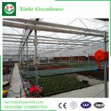 China várias peças com efeito de estufa com a norma ISO 9001: 2008 Qualidade garantida