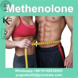 Steroid-Puder Methenolone Enanthate Rohstoffe CAS: 303-42-4 bodybuildend