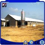 Azienda agricola di pollo prefabbricata della struttura d'acciaio delle costruzioni del metallo da vendere