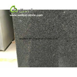 Chine Big Grain Impala Black G654 Granite Slabs