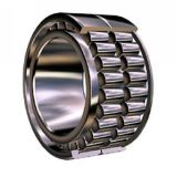 Cylindrical Roller Bearing (N, NU, NJ)