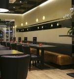(SD3015) Mobília do restaurante do projeto simples com tabela e cadeiras