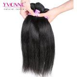 最上質のまっすぐなバージンのマレーシア人の毛