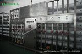 Ro-Wasserbehandlung-Maschinen-/Wasser-Filter-System (10, 000L/H)