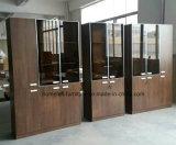 De Boekenkast van de Plank van het Bureau van het Kabinet van het dossier met het Kantoormeubilair van de Deur van het Glas