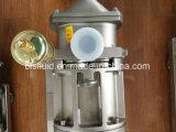 쌍둥이 나선식 펌프, 두 배 나선형 펌프, 액체 펌프