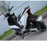 Bike 2017 USB LCD качества 1000W СИД Китая электрический с литием (ветреным)