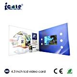 Tarjeta de Vídeo LCD de 4,3 pulgadas para el complejo turístico e inmobiliario