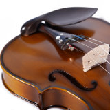 Feste Violine mit blinder Flamme Brown