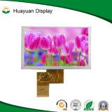 5 módulo padrão do luminoso TFT LCD da polegada