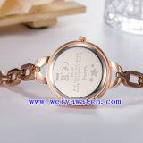O relógio de venda quente personaliza o relógio do aço inoxidável (WY-039C)