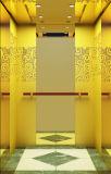 Levage résidentiel 630kg d'ascenseur de passager de Fujizy/ascenseur de passager/passager