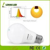 Bulbo equivalente ambarino del vatio 9W E26 LED de las bombillas 60 del poder más elevado A19 LED