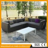 現代食事の余暇の藤の柳細工のラウンジの組合せのソファーの一定の屋外の庭の家具