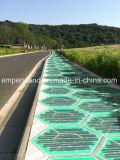 L'énergie solaire la brique pour Zebra Square Crossing&&Trail