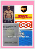 Un 99% de polvo blanco Trimebutine Maleate Antiandrogen para Bodybuilding