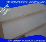 madeira compensada comercial da madeira do Poplar de 9mm 12mm 15mm 18mm com preço razoável