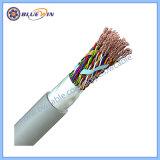 100 Paare CAT6 UTP LAN-Kabel-