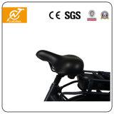 36V 250W equilibrio eléctrico cortador eléctrico bicicletas bicicleta Bicicleta carretera