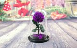 小さい王子、Sの夢のクリスマスの装飾の絹の花