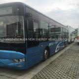 熱い販売モデルリチウムバス電池式の電気12メートルの