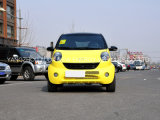 Новый дешевый электрический автомобиль с 2 местами для сбывания