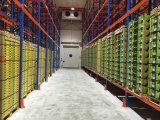 Combina un cuarto frío (cold storage)