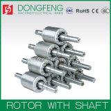 Rotor e estator para Motor Eléctrico