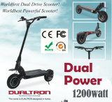 Commerce de gros poids léger 2 roues scooter électrique électrique permanent avec le siège