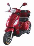 Motorino elettrico di mobilità delle 3 rotelle con la batteria al piombo 48V