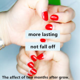 15ml Guangdong cosmétiques usine OEM ODM sans acide apprêt d'ongles