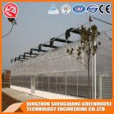 Van het Frame van het Staal van de Bloem van de Spanwijdte van China het Multi Plantaardige Groene Huis van het PC- Blad