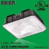 LED-Kabinendach-Licht mit UL-Liste