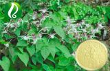 Fabrik-Zubehör-horniges Ziegeweed-Auszug Icariin Puder 10%-90%
