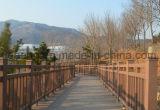 Nueva cerca decorativa material reciclable del jardín/del parque/del balcón de WPC