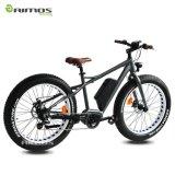 26 bici eléctrica del mecanismo impulsor 48V 500W de Dapu de la pulgada MEDIADOS DE