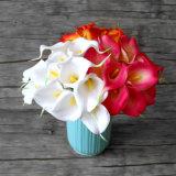 실제적인 접촉 칼라 백합 꽃 줄기 인공적인 칼라 백합 꽃