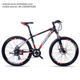 Bici de montaña de acero barata al por mayor